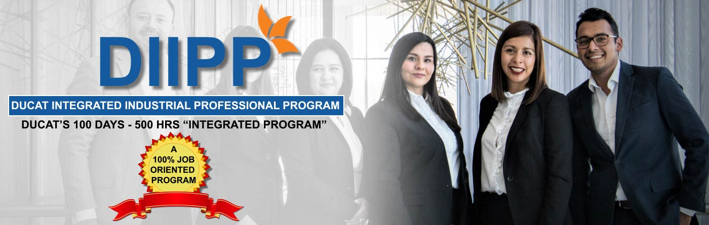 Ducat Integrated Industrial Professional Program - DIIPP
